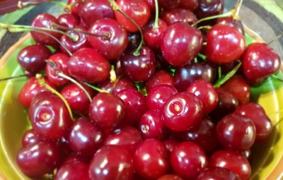 Cherry vs. Sour Cherry