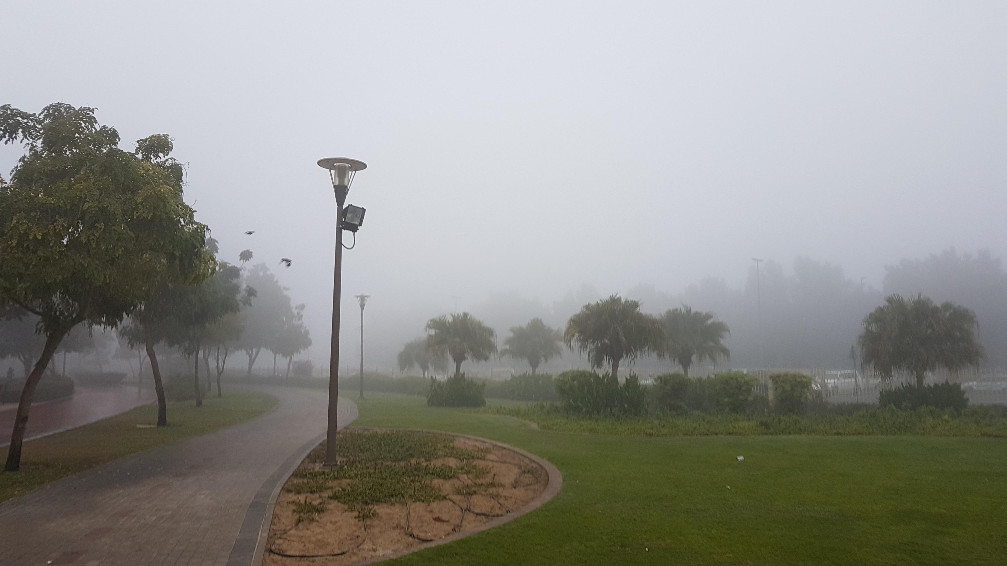 Al Barsha Park- Dubai