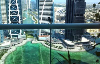JLT LT View - Dubai